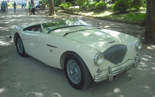 Austin Healey 100 Rent Braga